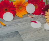 Soaps, bath salt, loofah sponge. free place, aromatherapy, cosmetics stock images