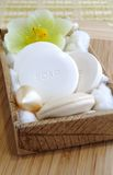 soaps den naturliga organiska seten för badet brunnsorten Arkivfoto