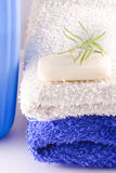 Soaps and detergents Royalty Free Stock Photos