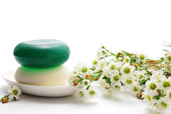 Soaps and waxflower Stock Image