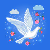 Soaring dove with flower in the clouds Stock Photo
