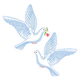 Soaring dove with flower Stock Image