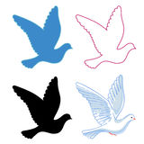 Soaring dove Royalty Free Stock Images