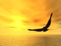 soaring för örn Royaltyfri Fotografi