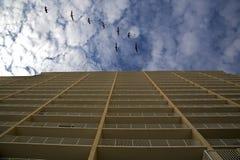 Soaring pelecans above ocean condo. Pelicans soar across a cloudy sky above a Gulf coast condo Royalty Free Stock Photography