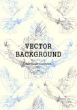 Soaring white dove. Vector hand drawn illustration Stock Image