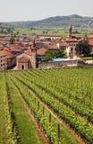soave włoski miasteczko Zdjęcia Stock