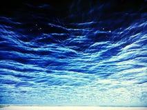 Sob a água Imagens de Stock