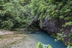 Sob a água de mola à terra Foto de Stock Royalty Free