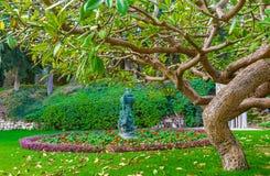 Sob a árvore Imagens de Stock