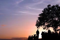 Sob a árvore Foto de Stock Royalty Free