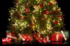 Sob a árvore de Natal Imagem de Stock Royalty Free