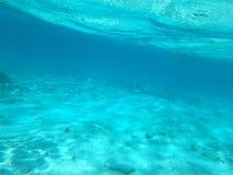 Sob a cena da água Imagens de Stock Royalty Free