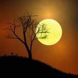 Sob a lua ilustração stock