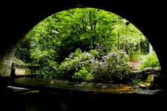Sob o bridgw Fotografia de Stock Royalty Free