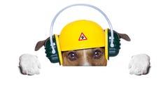 Sob o cão da construção Fotografia de Stock Royalty Free