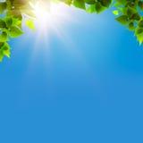 Sob os céus azuis Fotografia de Stock