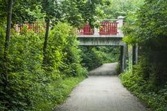 Sob a ponte com uma vista escandinava verde ao lado do rio Fotos de Stock Royalty Free