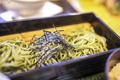 Soba noodle stock photo