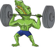 Sobek Weightlifter Lifting Barbell Caricature Royalty Free Stock Photo