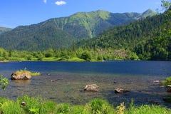 Sobolowi jeziora obrazy royalty free