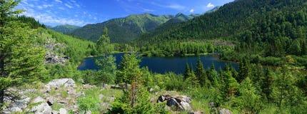 Sobolowi jeziora obraz royalty free