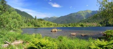 Sobolowi jeziora zdjęcie royalty free