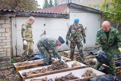 Sobras da pilha dos pesquisadores dos soldados soviéticos em uns caixões para o enterro Fotografia de Stock
