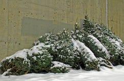 Sobras de la Navidad Fotografía de archivo libre de regalías