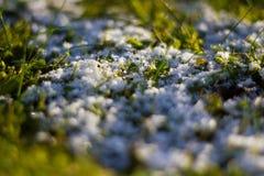 Sobras de la nieve Fotografía de archivo libre de regalías