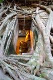 Sobre 200 anos de Buddha na igreja com o Bodh Foto de Stock