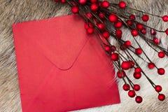 Sobre de la Navidad con el espacio para el texto Fotos de archivo libres de regalías