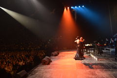 Sobre dez milhares os povos atendem concerto do aniversário do ano de Viktor Drobysh ao 50th em Barclay Center Imagens de Stock Royalty Free
