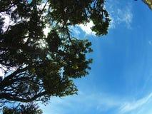 Sobre la nube imagen de archivo libre de regalías