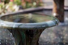 Sobre o banho de fluxo do pássaro Fotografia de Stock Royalty Free