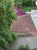 Sobre a opinião dos telhados fotografia de stock royalty free
