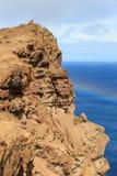 Sobre os penhascos Madeira imagem de stock