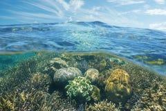Sobre y arrecife de coral y cielo subacuáticos con la nube Foto de archivo