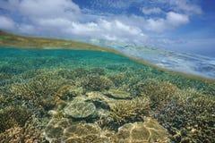Sobre y debajo del arrecife de coral y del cielo del mar con las nubes Fotos de archivo