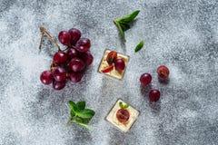 Sobremesa Berry Refreshment Tasty da uva de Panakota imagem de stock royalty free