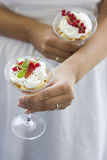 Sobremesa cremosa Imagens de Stock
