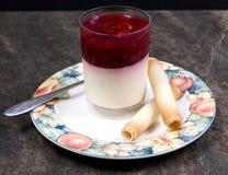 Sobremesa da framboesa e do iogurte Fotos de Stock Royalty Free