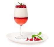 Sobremesa da geléia com hortelã e romã Foto de Stock