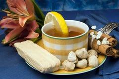 Sobremesa de Equador Imagens de Stock Royalty Free
