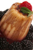 Sobremesa de Gelatin fotografia de stock