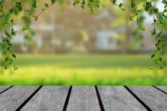 Sobremesa de madera con el fondo verde de la falta de definición con los árboles en el parque con el marco de la vid fotografía de archivo