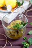 Sobremesa do granita da hortelã e do citrino Fotografia de Stock Royalty Free