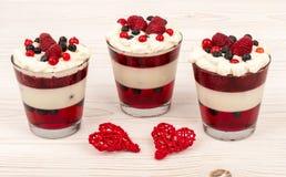 A sobremesa do iogurte com creme, gelatiniza-se, framboesas e mirtilos Imagens de Stock
