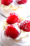 Sobremesa do meringue da framboesa Imagens de Stock Royalty Free