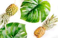 Sobremesa do verão com abacaxis e planta na opinião superior do fundo branco Fotografia de Stock